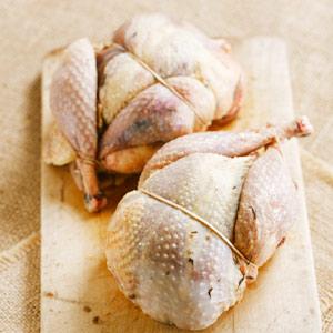 pheasant-partridge